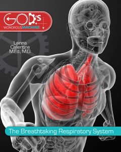 The Breathtaking Respiratory System