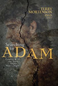 Searching for Adam