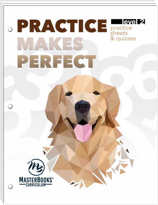 Practice Makes Perfect: Level 2