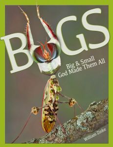 Bugs (Download)