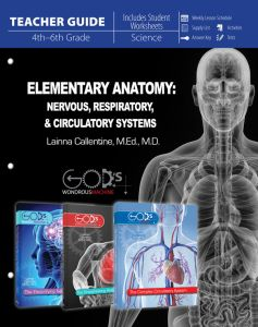 Elementary Anatomy: Nervous,  Respiratory, Circulatory Systems (Teacher Guide - Download)