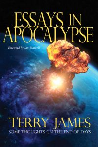 Essays in Apocalypse (Scratch & Dent)