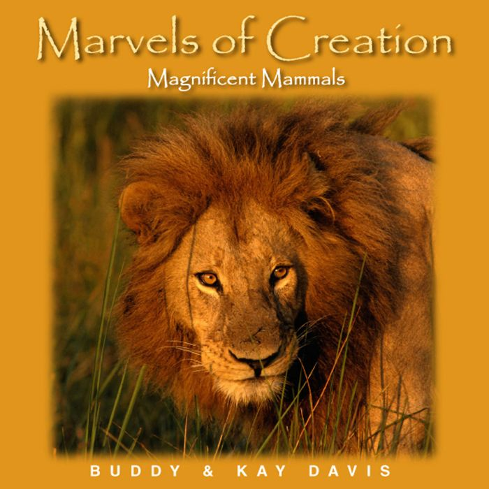 Marvels of Creation: Magnificent Mammals (Download)