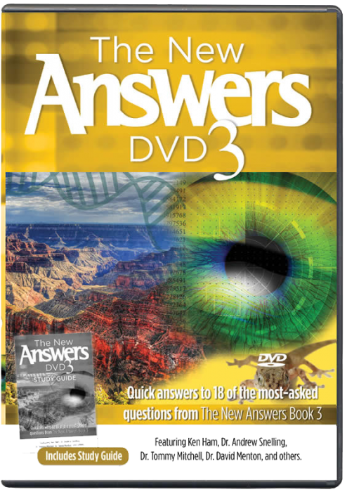 The New Answers DVD 3 (MP4 Download)