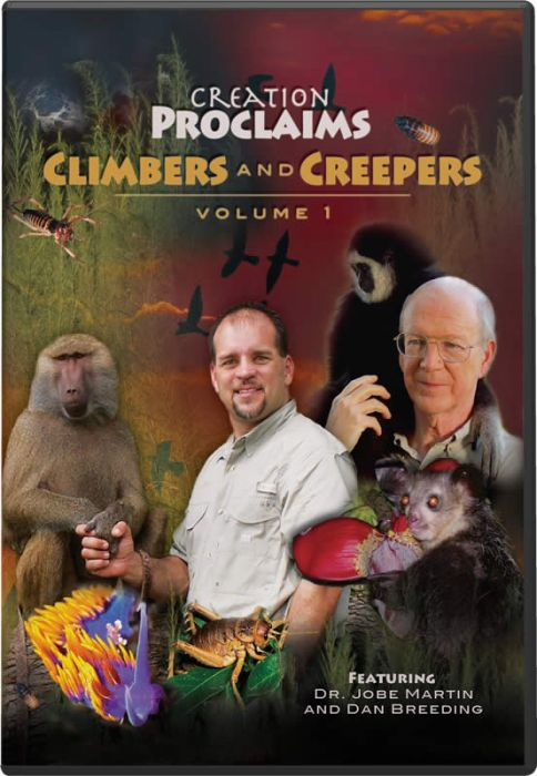 Creation Proclaims: Climbers and Creepers