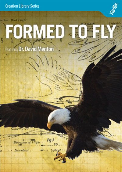 Formed to Fly
