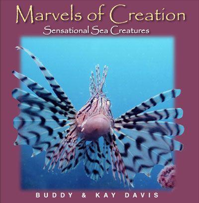 Marvels of Creation: Sensational Sea Creatures